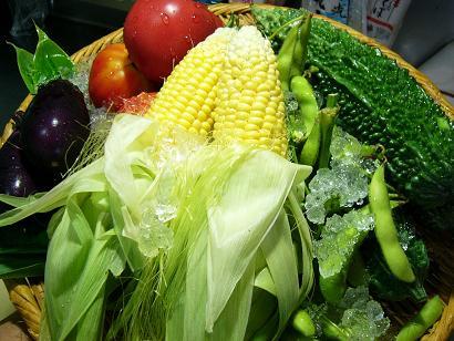 夏野菜セット1