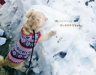 りっくんと雪。。