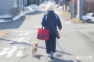 お散歩。。そしてお買い物。。