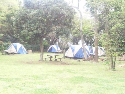 キャンプも出来る少年自然の家もある大房岬自然公園は穴場スポットだ