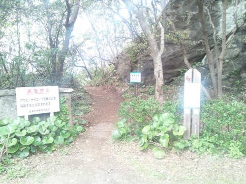 岬の浜へ下る坂道で下には風穴があるという出入り口