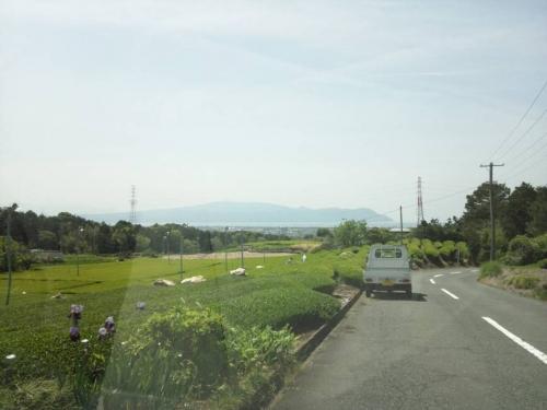 沼津市の茶畑で遠くに見える駿河湾をゴールデンウィークに田貫湖へ