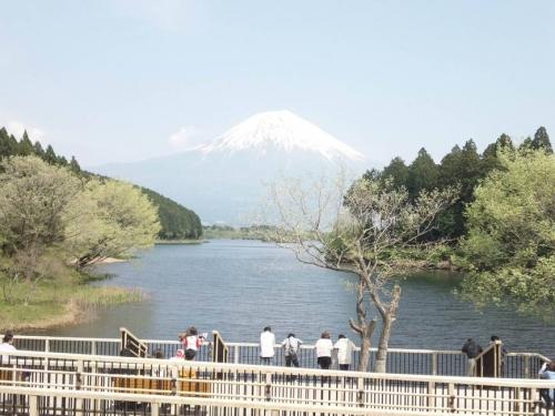 富士山に包まれた田貫湖を展望台から眺める人たちの光景