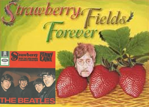 Strawberry Fields Forener THE BEATLES ストロベリーフィールズフォーヴァー