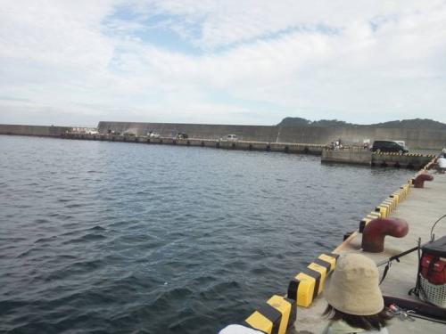 伊豆の松崎町の海釣り場所の青空に暑くなってきた風景