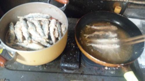 釣った子サバを揚げて料理してる写真です