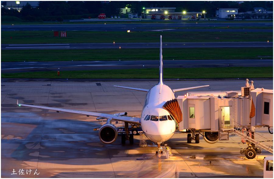 伊丹空港・5