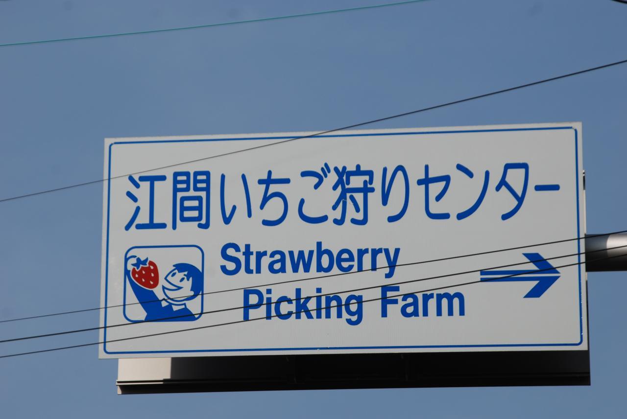 江間いちご狩りセンター(看板)