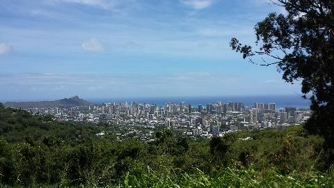 ハワイの街を一望できる場所へ