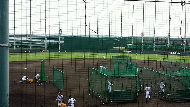 阪神タイガース練習