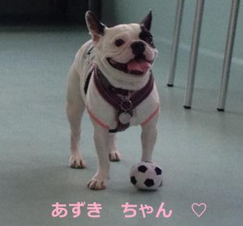 縺ゅ★縺坂贈_convert_20140530225832