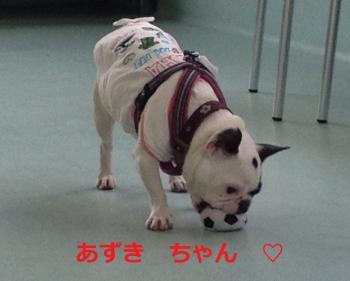 縺ゅ★縺坂造_convert_20140530225857