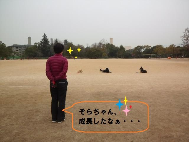 CA3K08890001.jpg