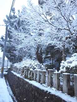 20140214雪の日2