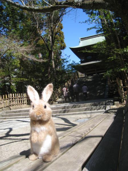 鎌倉散歩に出発!