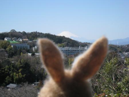今日も富士山がよく見えるね!