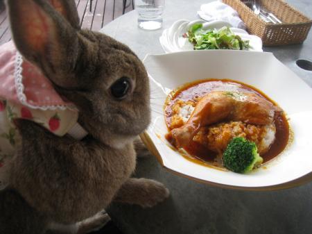 私のサラダはまだ?