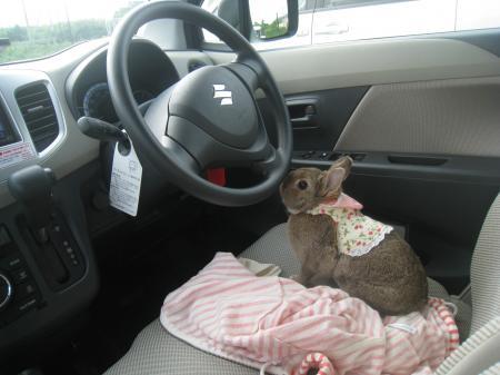 運転しようか?