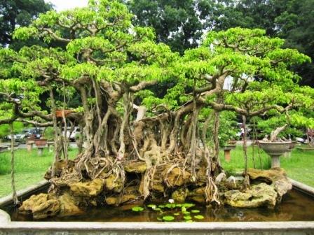 Hanoi1408_007.jpg