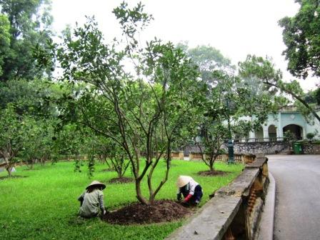 Hanoi1408_015.jpg