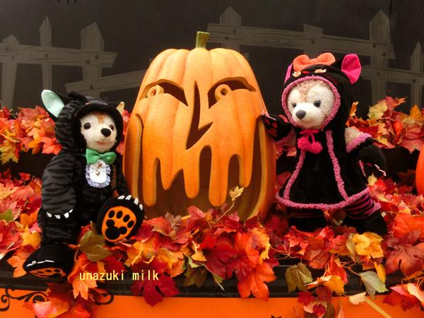 猫ダフメイとかぼちゃ