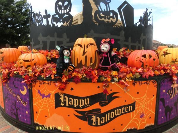 猫ダフメイとかぼちゃ全体