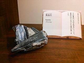 kenji19.jpg