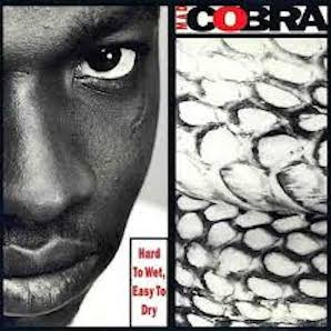 MAD COBRA「HARD TO WET, EASY TO DRY」