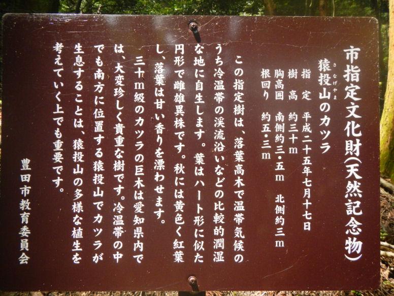 katsura3