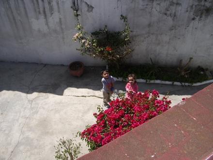 Mexico 2011 2 13-1(440x330)