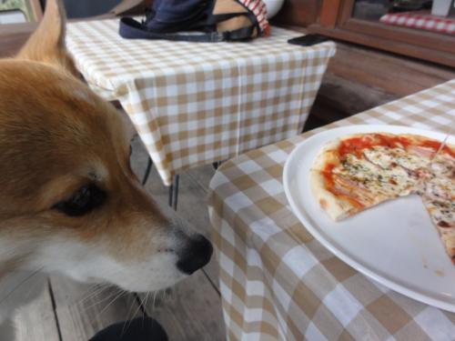 食べたい2