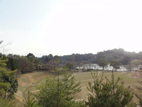 甘木公園1