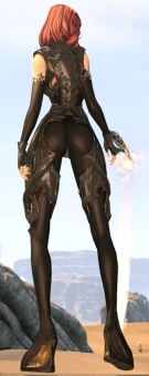 サソリの衣2