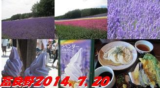 富良野2014、7、20