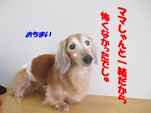 IMG_2164.jpg