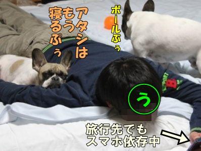14_20140422144405ade.jpg