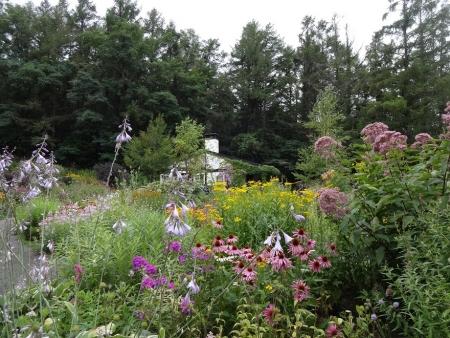 16:16 グリ-ンハウス前の花畑