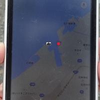 中央ふ頭の赤いところにいます。西ふ頭はあっち(*^_^*)