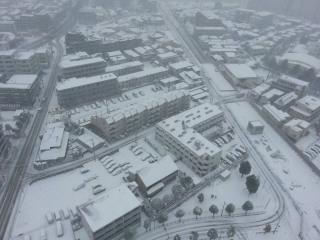 45年ぶりの雪景色