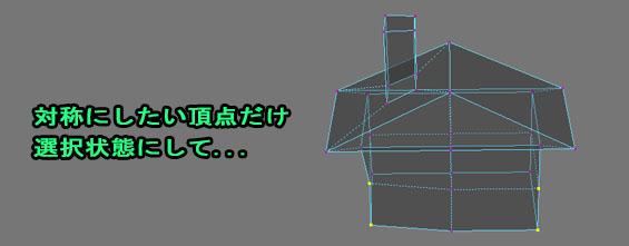 AriSymmetryChecker03.jpg