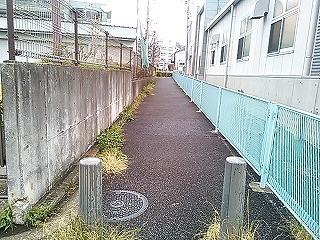 aobayakusho2.jpg