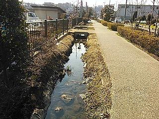 hujigaoka11.jpg