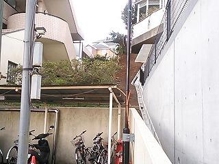 ichi-shimo11.jpg