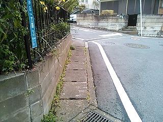 ichi-shimo2-2.jpg