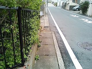 ichi-shimo2-3.jpg