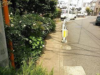 shimosaku423-12.jpg