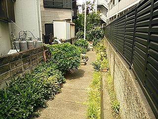 shimosaku423-4.jpg