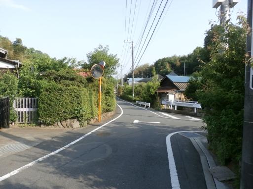 P5130597.jpg