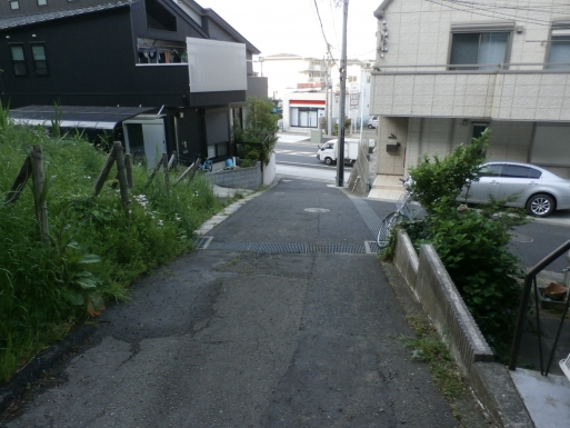 P5130613.jpg