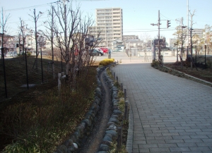 P306053くねくね公園②